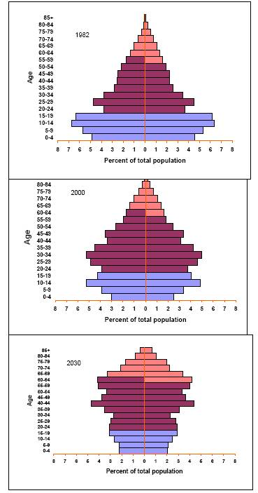 China's population pyramid