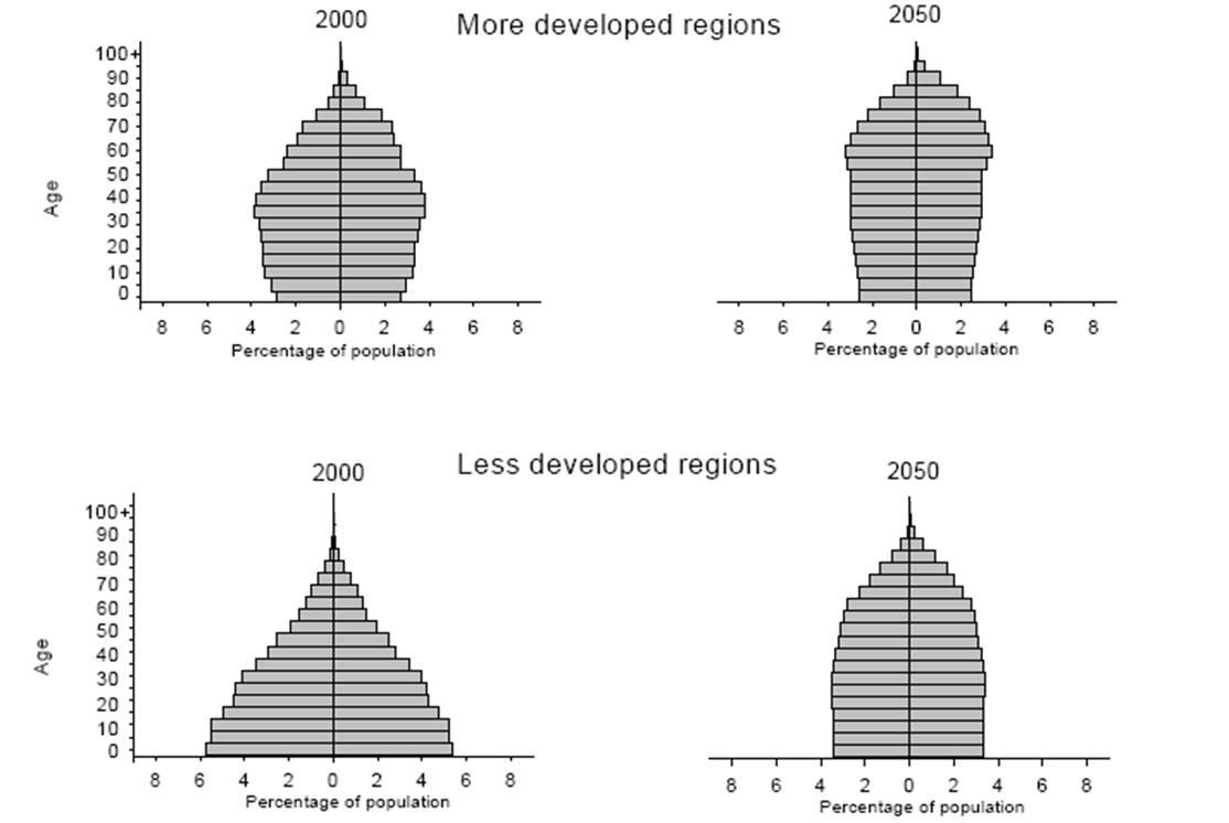 world popn pyramid 2